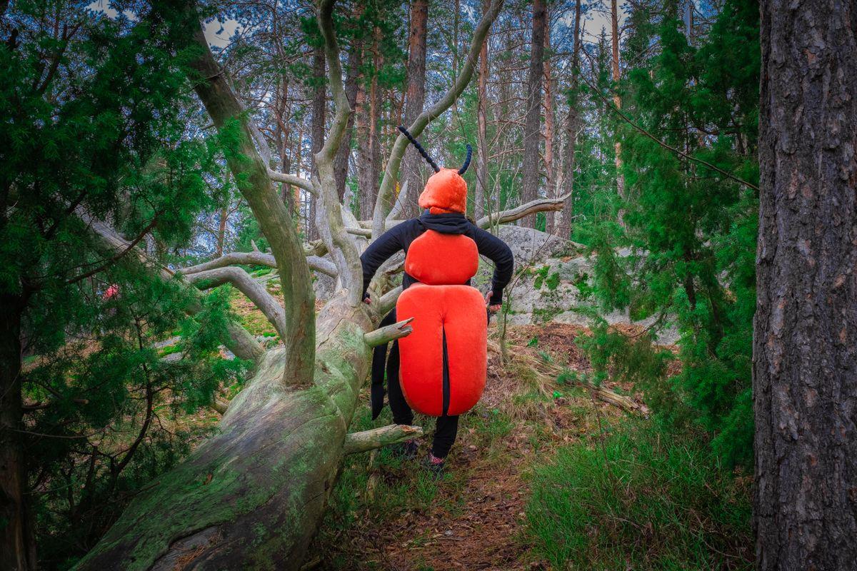Kovakuoriaspuvussa oleva henkilö poseeraa kaatuneen puun vieressä.