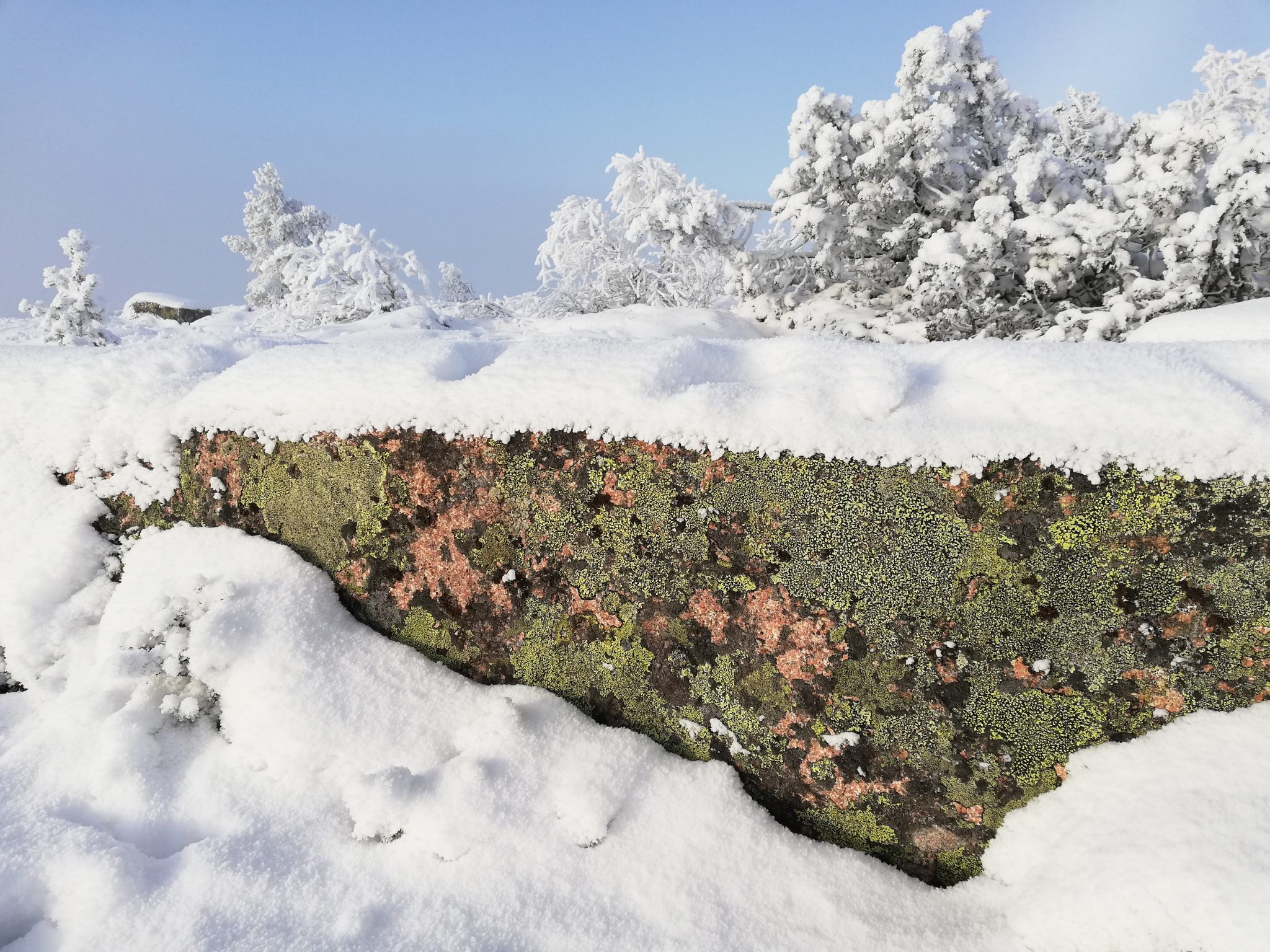 Talvinen luontomaisema, kallio pilkottaa paksun lumipeitteen alta.